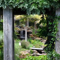 Sub-tropical water gardens