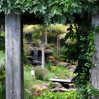 Sub-tropical water gardens
